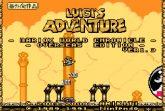 Luigi's Adventure